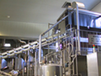 Wide continuous rice steamer